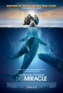 Big Miracle Poster Artwork