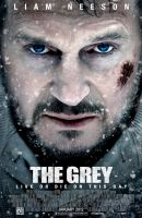 The Grey Poster Artwork