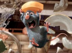 Ratatouille Photo - Copyright Disney/Pixar