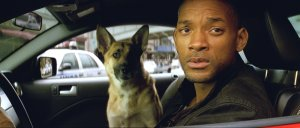 Will Smith and his dog Samantha out for a little deer hunting in a Shelby Mustang